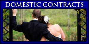Domestic Contracts | wedding